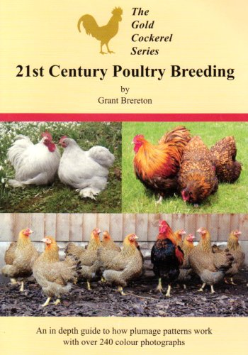 9780947870577: 21st Century Poultry Breeding