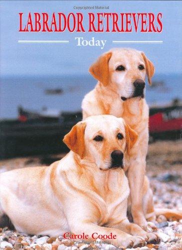 Labrador Retrievers Today (Book of the Breed: Coode, Carole