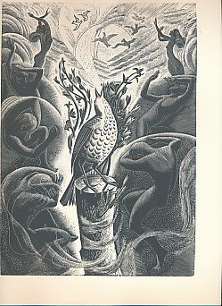 Margaret Bruce Wells: Complete Wood Engravings and Linocuts (9780951228784) by Jeremy Greenwood; Maggie McCune