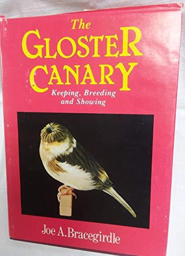 The Gloster Canary: A Guide to the: Bracegirdle, Joe A.