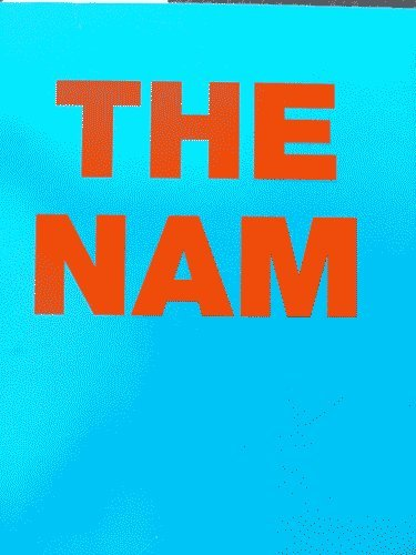 9780951495315: Fiona Banner: The Nam