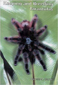 Keeping and Breeding Tarantulas: Baxter, Ronald N.