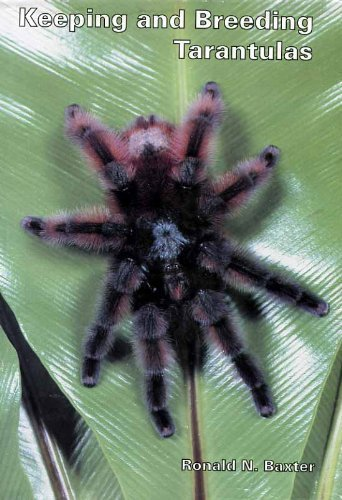 Keeping and Breeding Tarantulas: Ronald N. Baxter