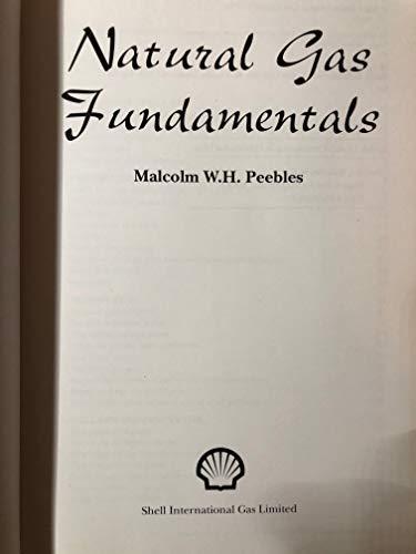 9780951929902: Natural Gas Fundamentals