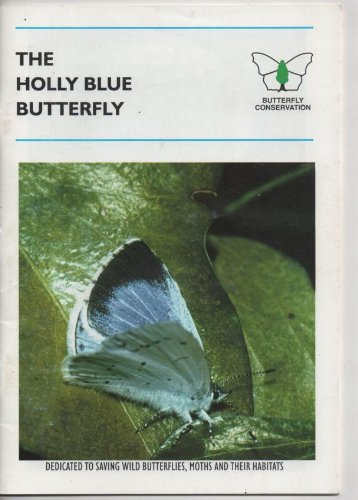 9780952260271: Holly Blue Butterfly
