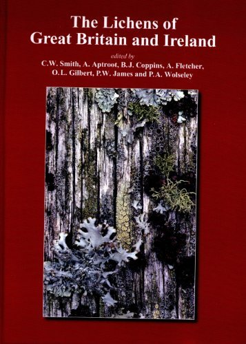 9780952304906: The Lichen Flora of Great Britain and Ireland
