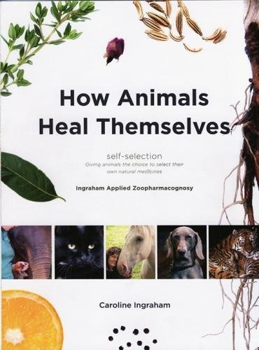 9780952482727: How Animals Heal Themselves: Ingraham Applied Zoopharmacognosy