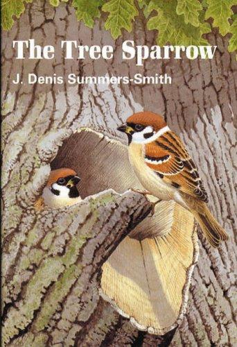 9780952538301: Tree Sparrow