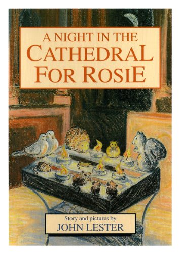 9780953109029: A night in the cathedral for Rosie