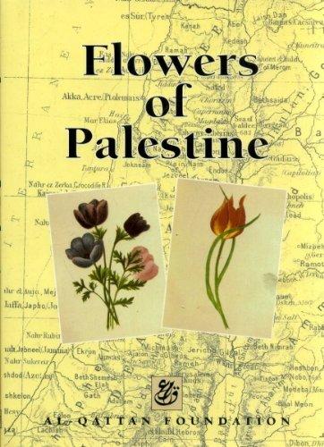 9780953117703: Flowers of Palestine