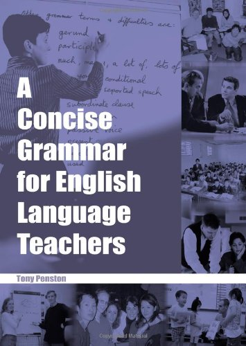 9780953132317: A Concise Grammar for English Language Teachers