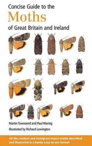 9780953139965: Concise Guide to the Moths of Great Britain and Ireland