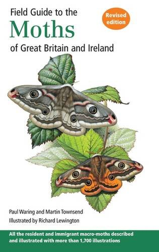 Field Guide to the Moths of Great Britai: Waring, Paul