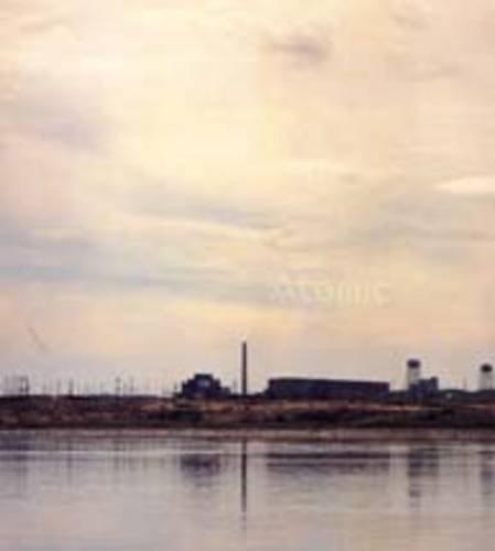 Atomic: James Acord, Carey Young, Mark Waller James Flint