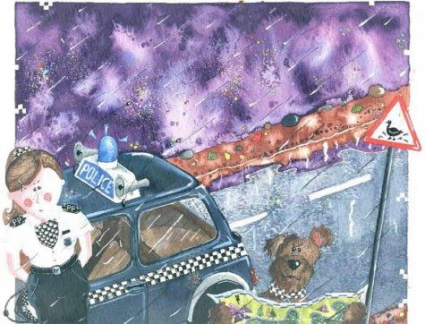PC Polly to the Rescue: Jayne Allan; Illustrator-Lynn