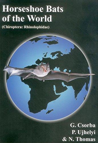 9780953604913: Horseshoe Bats of the World: (Chiroptera: Rhinolophidae)