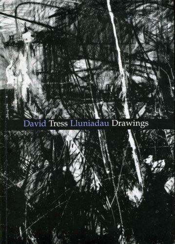 9780953610839: David Tress Drawings