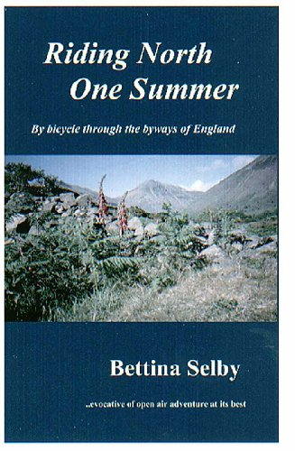 9780953800759: Riding North One Summer