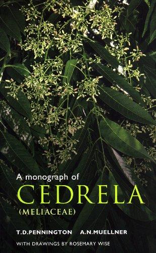 9780953813476: A Monograph of Cedrela (Meliaceae)