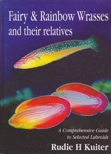9780953909728: Fairy and Rainbow Wrasses: A Comprehensive Guide to Selected Labroids