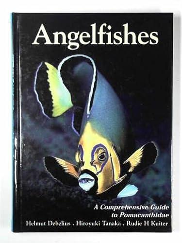 9780953909759: Angelfishes