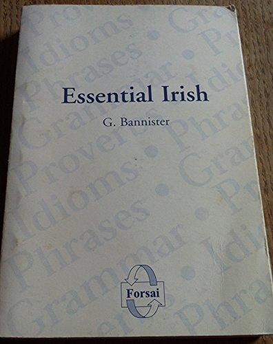 9780954103811: Essential Irish