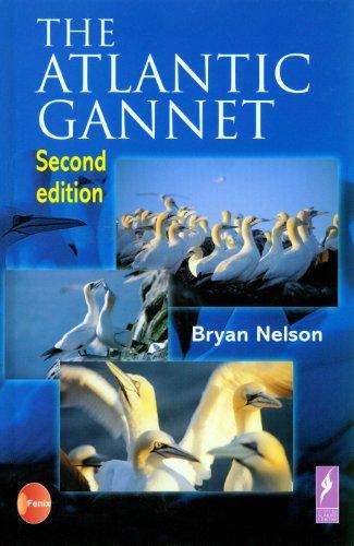 9780954119102: Atlantic Gannet, The