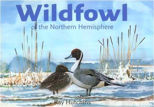 9780954307011: Wildfowl of the Northern Hemisphere
