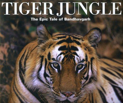 9780954311520: Tiger Jungle: The Epic Tale of Bandhavgarh