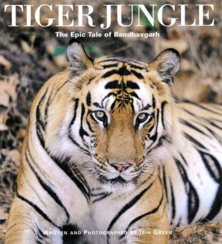 9780954311537: Tiger Jungle