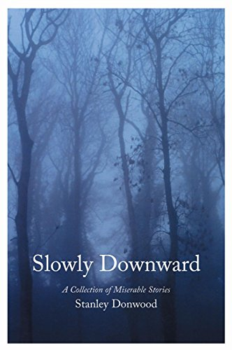 9780954417734: Slowly Downward: A Collection of Miserable Stories
