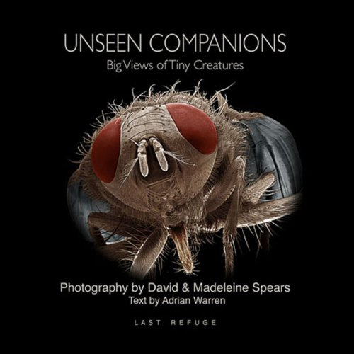 9780954435042: Unseen Companions: Big Views of Tiny Creatures
