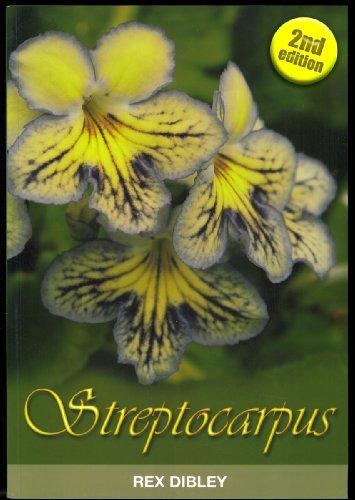9780954446826: Streptocarpus