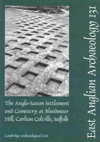 9780954482466: The Anglo-Saxon Settlement and Cemetery at Bloodmoor Hill, Carlton Colville, Suffolk (East Anglian Archaeology Monograph)