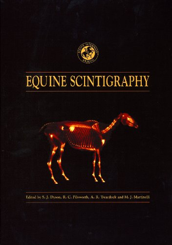 9780954568900: 'Equine Scintigraphy'