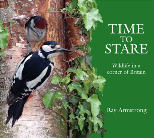 9780954572662: Time to Stare: Wildlife in a Corner of Britain