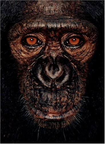 9780954689407: James and Other Apes