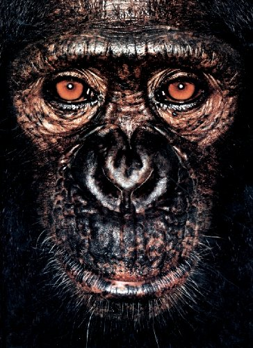 9780954689438: James & Other Apes