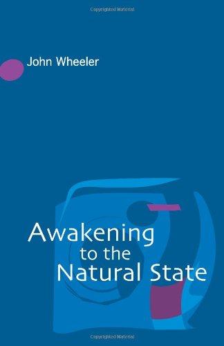 9780954779238: Awakening to the Natural State