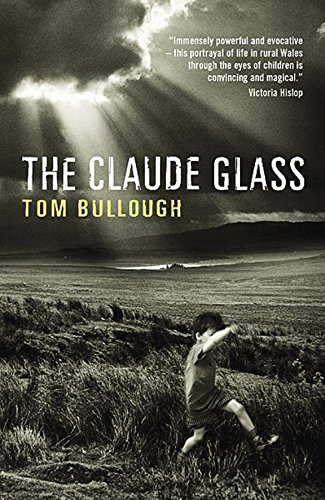 9780954899516: The Claude Glass
