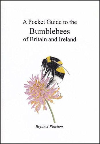 9780954934903: A Pocket Guide to the Bumblebees of Britain and Ireland