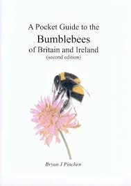 9780954934927: A Pocket Guide to the Bumblebees of Britain and Ireland