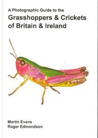9780954950613: A Photographic Guide to the Grasshoppers and Crickets of Britain and Ireland: A Photographic Guide to the Grasshoppers, Crickets and Groundhoppers of ... the Isle of Man and the Channel Islands