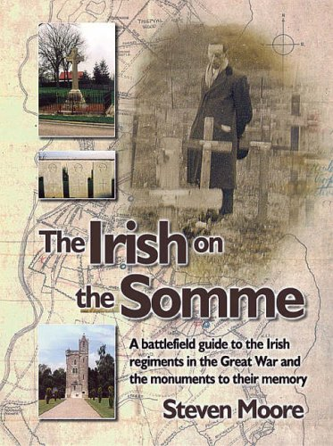 9780954971519: The Irish on the Somme