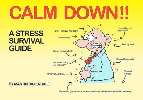 9780955050053: Calm Down!!: A Stress Survival Guide