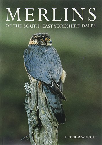 Merlins of the South-East Yorkshire Dales (095512770X) by Wright, Peter M.