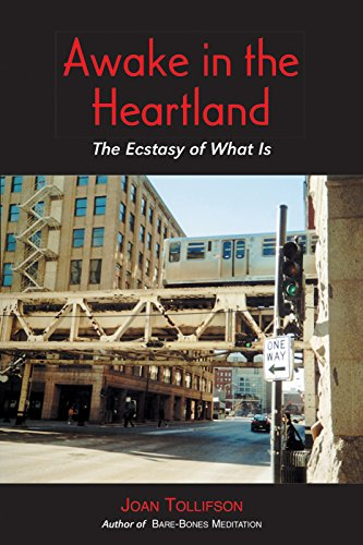 9780955176241: Awake in the Heartland: The Ecstasy of What Is