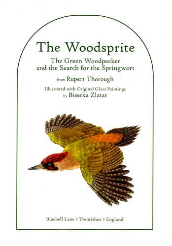 9780955234880: The Woodsprite: The Green Woodpecker and the Search for the Springwort