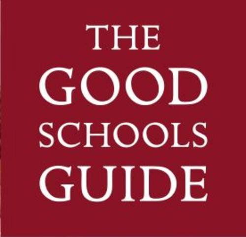 9780955282195: The Good Schools Guide