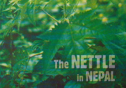 9780955290008: The Nettle in Nepal: Tradition and Innovation